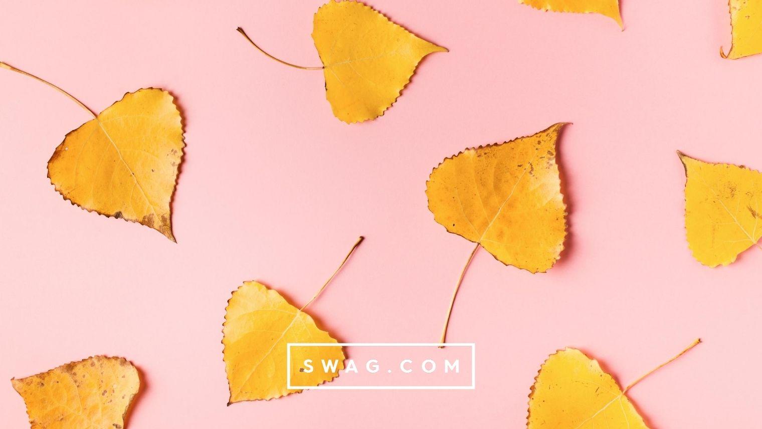 Autumn Swag Ideas
